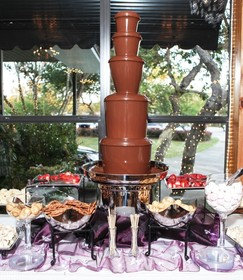 austin chocolate fountains