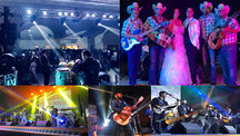 Live Music Groups